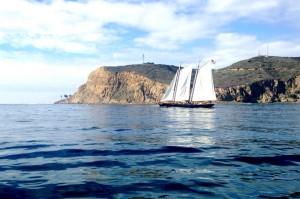 Nature Cruise 2
