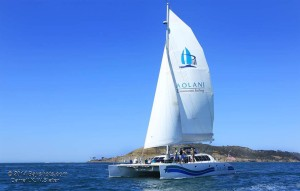 san diego day cruises